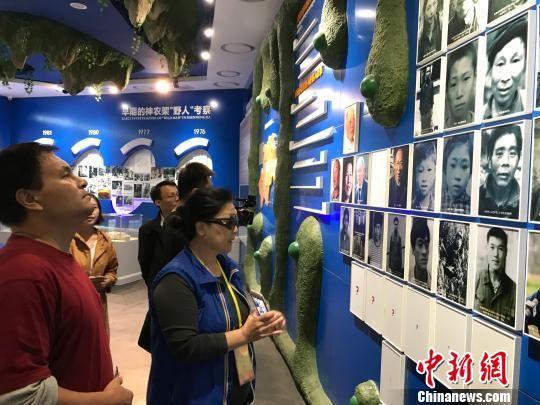 海外华文媒体代表参观生态科普馆,聚焦野人之谜。 董晓斌 摄