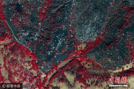 当地时间2017年10月12日,美国加州Green Vally,数字地球近红外卫星图像展示的Green Vally北部山火灾区。图片来源:视觉中国