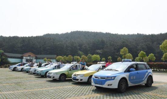 """江城的士司机带着家人参加花海乐园景区""""一人开的士,全家免费游""""活动 胡士明摄"""