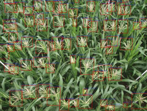 图说:目标检测用于识别农作物