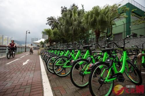 共享单车Gobee.bike。图片来源:香港《文汇报》资料图