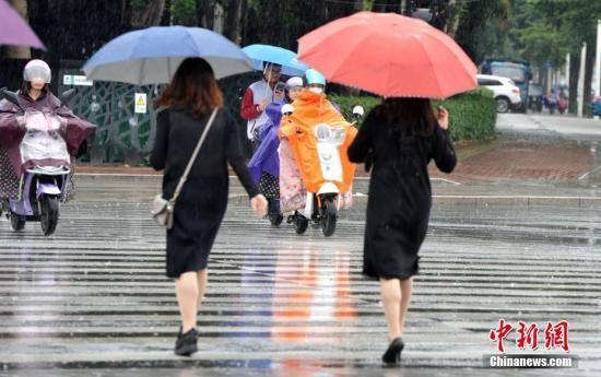 资料图:台风带来降雨、大风。张斌 摄