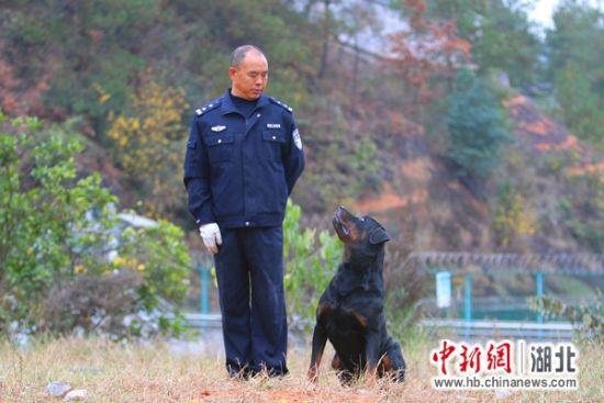 """警犬训导员熊克霜和""""黑虎"""""""