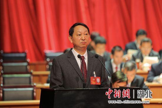 宜昌市政协主席宋文豹向大会作工作报告 中新社刘良伟摄