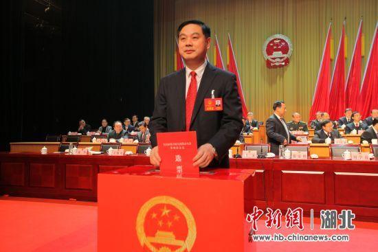 宜昌市长张家胜投票 中新社刘良伟 摄