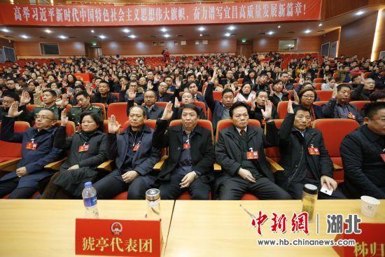 代表们举手表决 黄余洋 摄