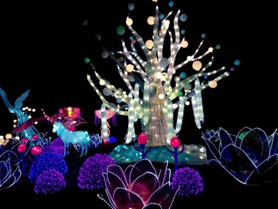 灯组:梦幻森林