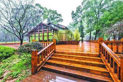 新修的木质观景平台宽敞舒适