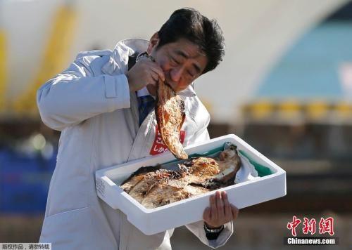 资料图:日本首相安倍晋三在日本福岛相马市参加活动,在现场品尝当地特色烤鱼,显示对农产品的支持。