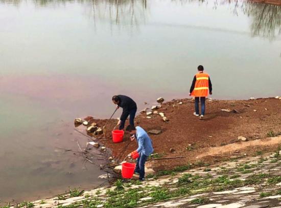 志愿者和群众清除水体垃圾