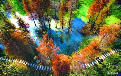 藏龙岛国家湿地公园