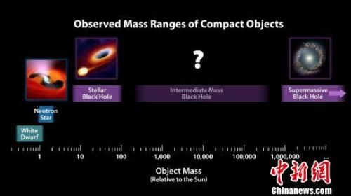 致密天体根据质量的分类。(图片来源:NASA) NASA 摄