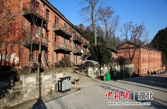 过去红星厂的家属楼,现在村民们的安乐窝