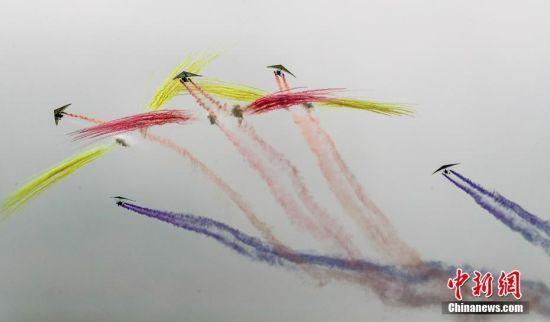 大雁与动力悬挂滑翔机一起御风飞翔。中新社记者 张畅 摄