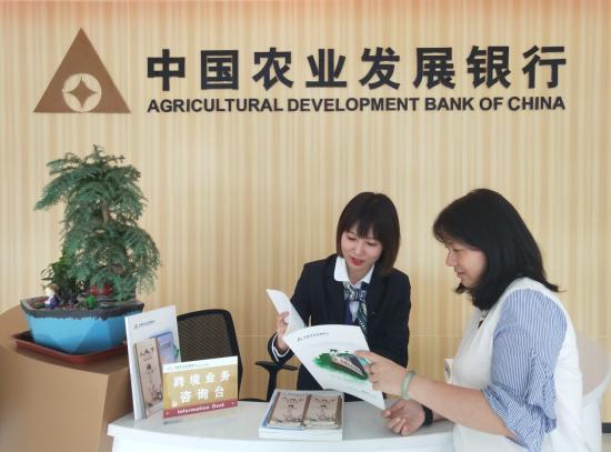 工作人员向客户讲解外汇及跨境人民币市场自律机制政策法规知识 陈丽坤 摄