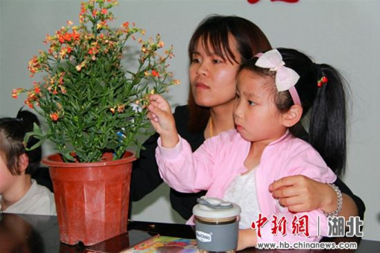 为留守儿童种植的植物挂姓名牌