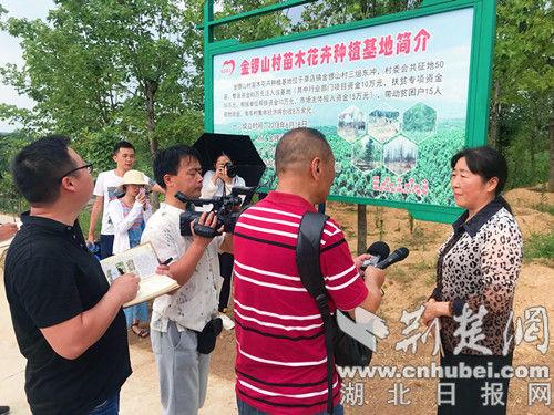 记者们采访金锣山村党支部书记刘志兰。记者 安从斌 摄