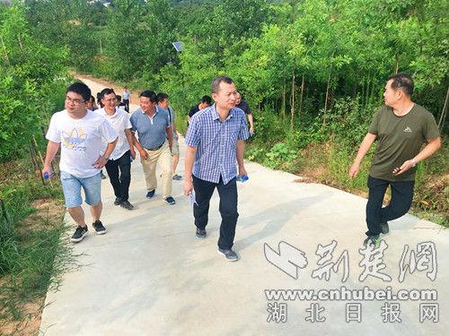 记者们参观苗木种植基地。记者 安从斌 摄