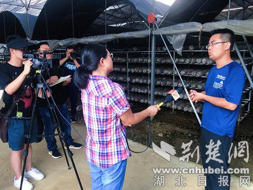 记者采访梅子沟村驻村书记续晓波。记者 安从斌 摄