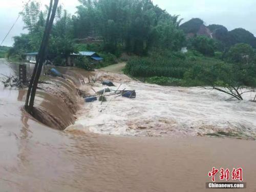 资料图:暴雨致四川自贡道路旁的树木倒伏、局部山体滑坡和部分地方积水严重。 贡井交警供图