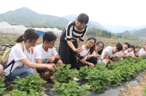 专家为学生讲解福白菊相关培育知识