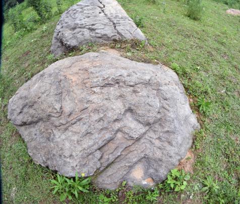 图三:湖北随州淮河龟形岩画巨石。周波 摄
