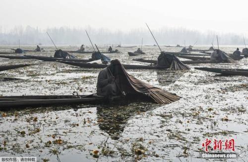 资料图:当地时间2017年12月28日,印控克什米尔斯利那加,渔民用毯子盖着头在城外的安佳湖上捕鱼。