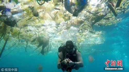 资料图:一名英国男子在巴厘岛海域潜水时拍下触目惊心的一幕。海洋中漂浮着大量塑料垃圾:瓶子、袋子、杯子、桶、吸管等等,鱼类及其他海洋生物都避之而不及。