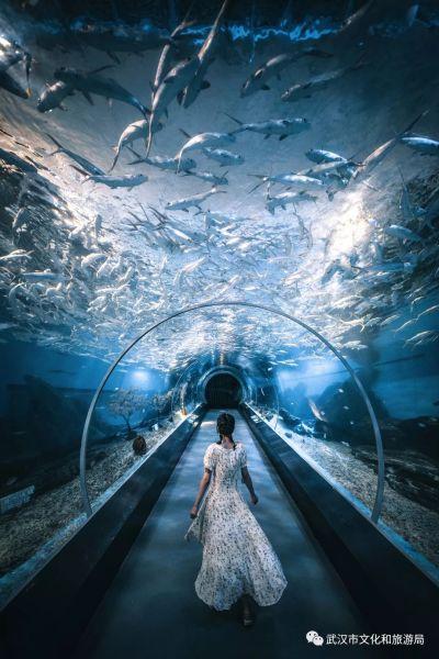 海昌极地海洋公园
