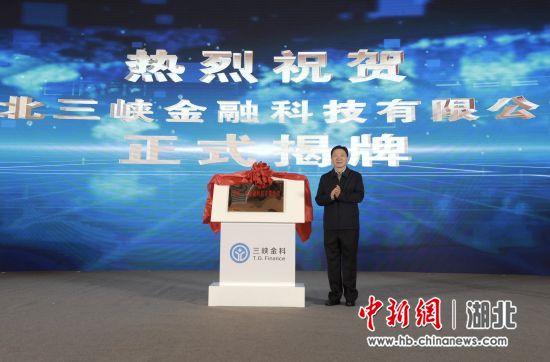 宜昌市委书记周霁出席揭牌仪式 严晓冬摄
