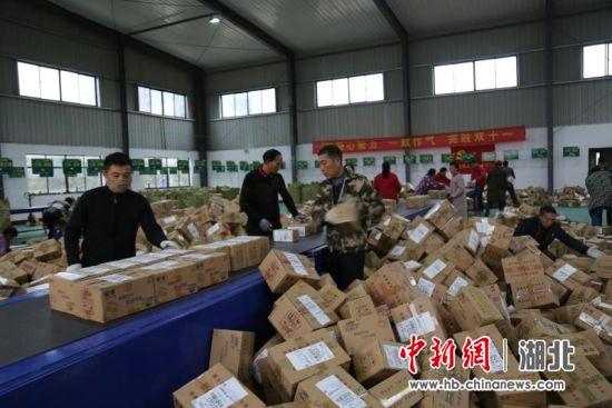 中新网湖北 湖北新闻网 钟祥迎丰
