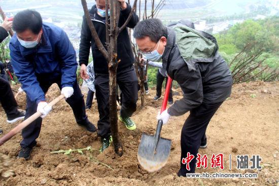 中新网湖北 湖北新闻网 兴山县干