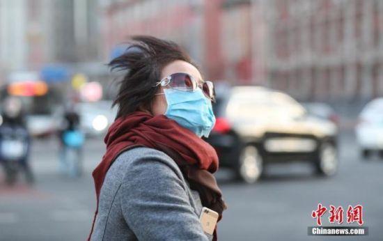 资料图:市民在风中出行。中新社记者 贾天勇 摄