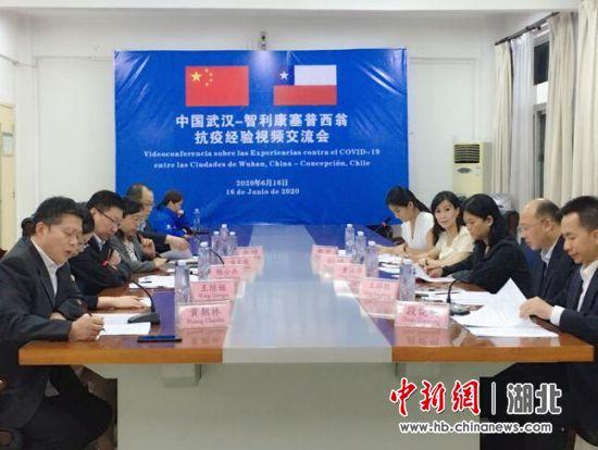 武汉与国际友城智利康塞普西翁举办抗疫经验交流会