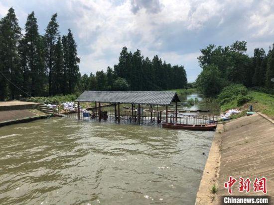 7月19日,太湖湖面平静,水位高企。 孙权 摄