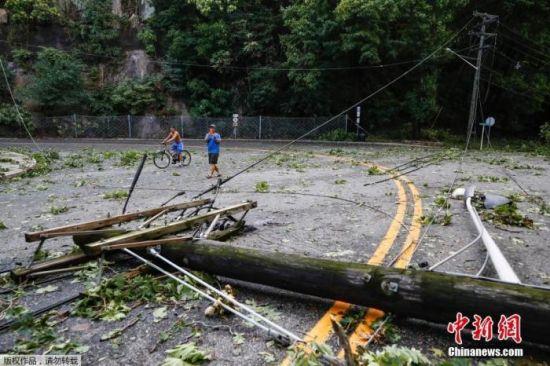 资料图:美国新泽西州,电线杆被风吹倒。