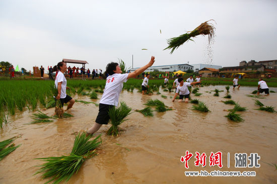 """""""泥仓子""""在枝江沿袭了近千年 刘良伟 摄"""