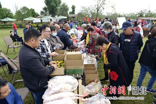 枝江第十届关庙山乡土文化节举行 刘康摄