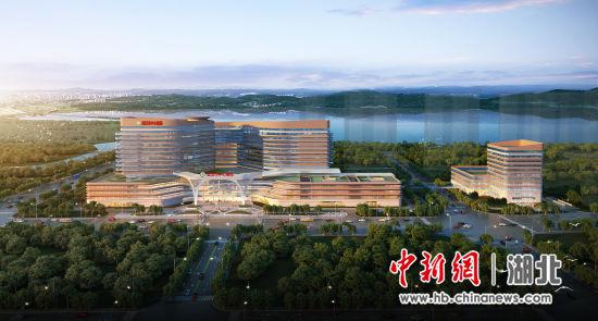 武汉市中心医院杨春湖院区效果图