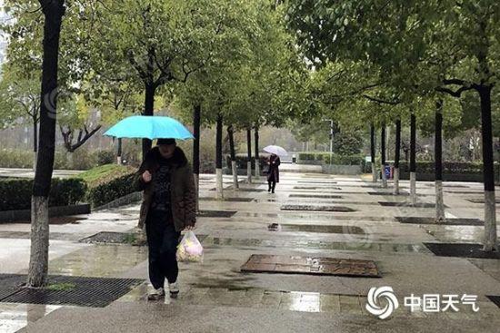 """昨天上午,湖南湘潭雨水""""在线""""。(图/张美丽)"""