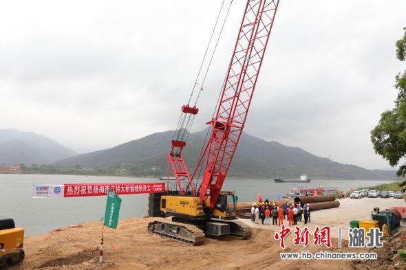 肇明高速杨梅西江特大桥钢栈桥开工(苗壮 摄)