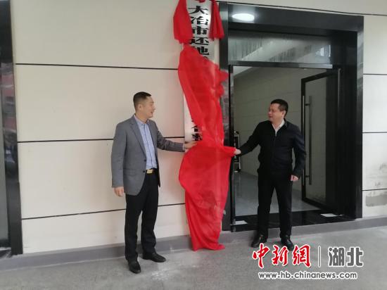 大冶还地桥镇全域国土综合整治项目揭牌