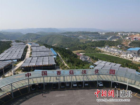 位于湖北十堰郧阳的香菇扶贫园(资料图) 邹浩 摄