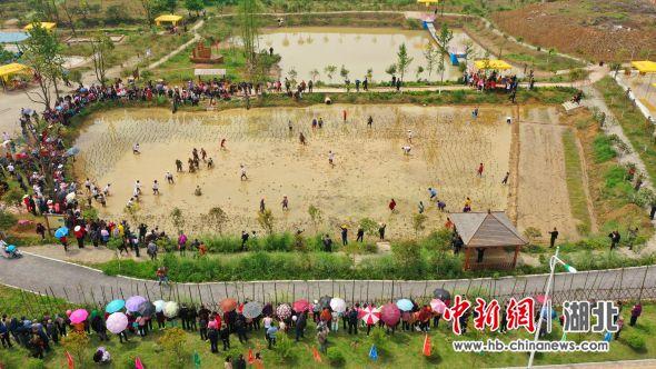 """枝江市第二届三峡""""泥仓子""""农耕文化旅游节开幕 周星亮 摄"""