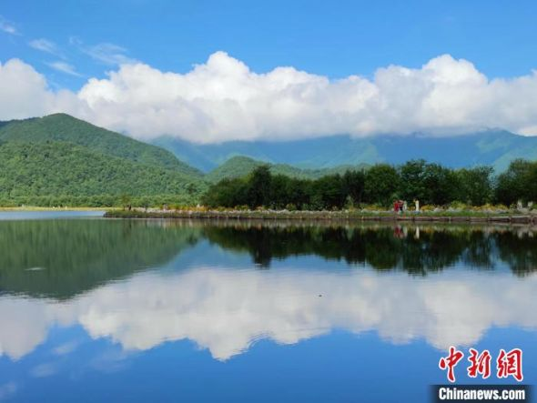 游客沿着菊花盛开的大九湖湖堤散步。(拍摄于7月20日) 大九湖镇政府供图