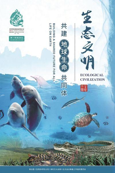 """COP15大会的官方海报上,有来自湖北的江豚家庭""""出席"""""""