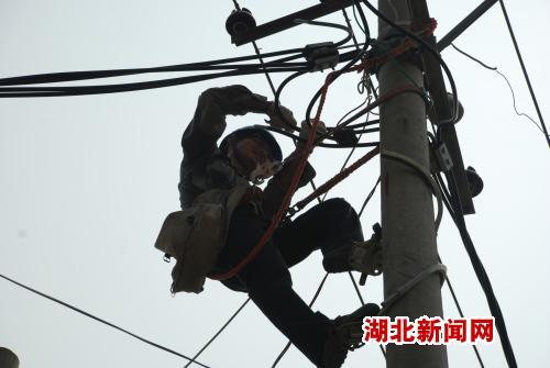 图:麻城供电职工烈日下抢修线路