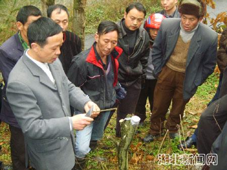 咸丰县注重农民技能培训