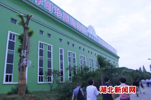 湖北蕲春县打造湖北最大中药材生产加工基地图片