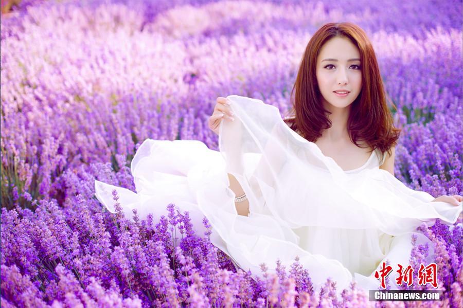 佟丽娅置身紫色熏衣草中 白裙飘飘 图片频道